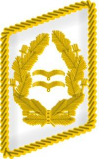45 generalleutnant_col
