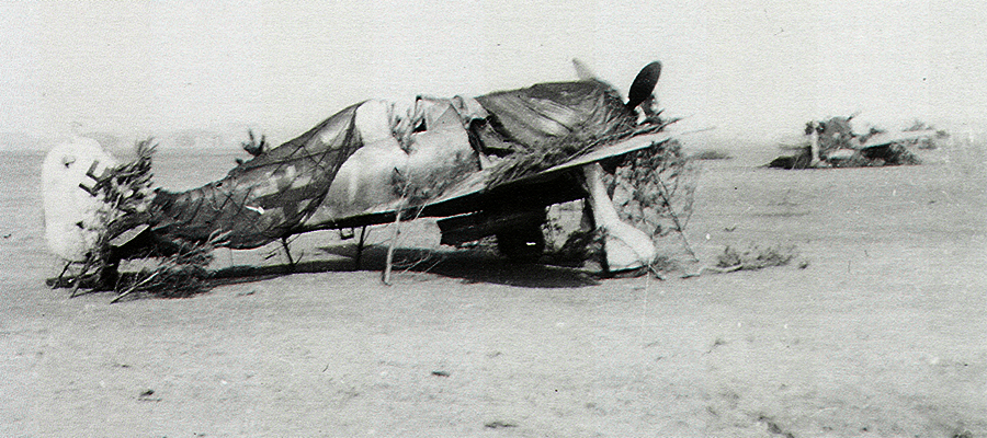 15-Fw-190 F8 .JG11-Yellow-7-Karlheinz-Kabus-1944