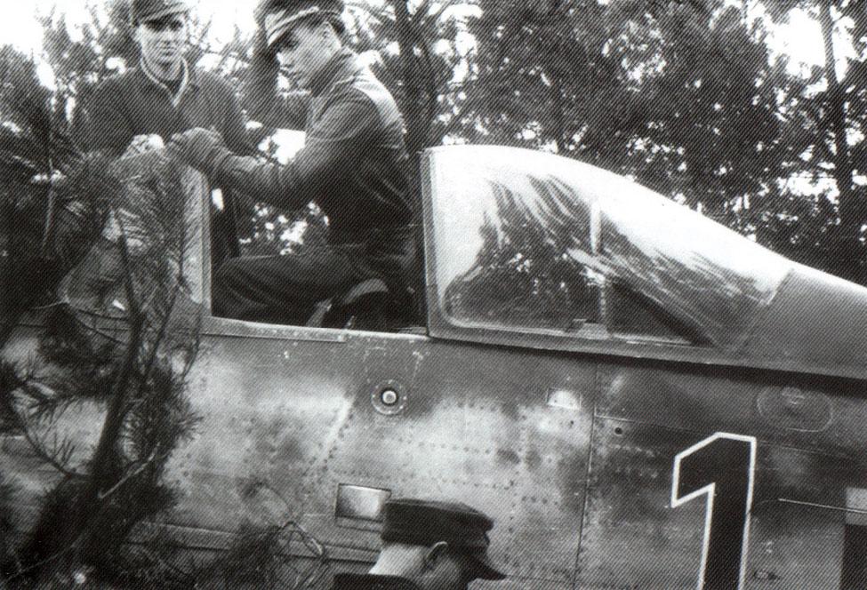17 - Fw 190 D-9, Hans Dortenmann, 14.JG26, Varrelbusch - Allemagne, Mars 1945.